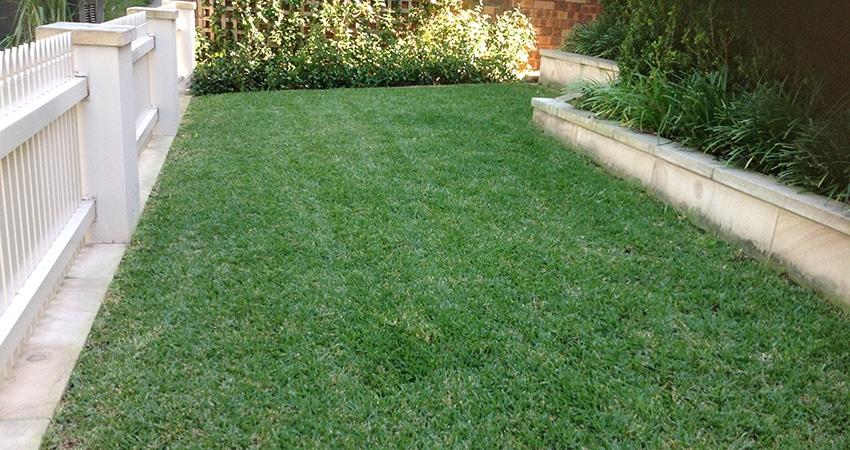 lawnmowing sydney - photo#6