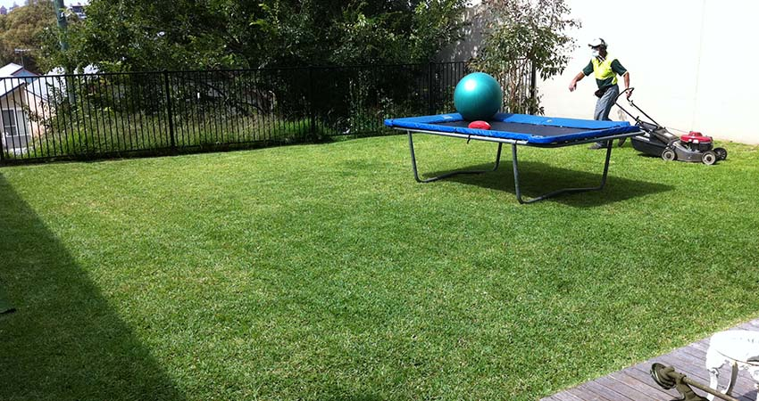 lawnmowing sydney - photo#1