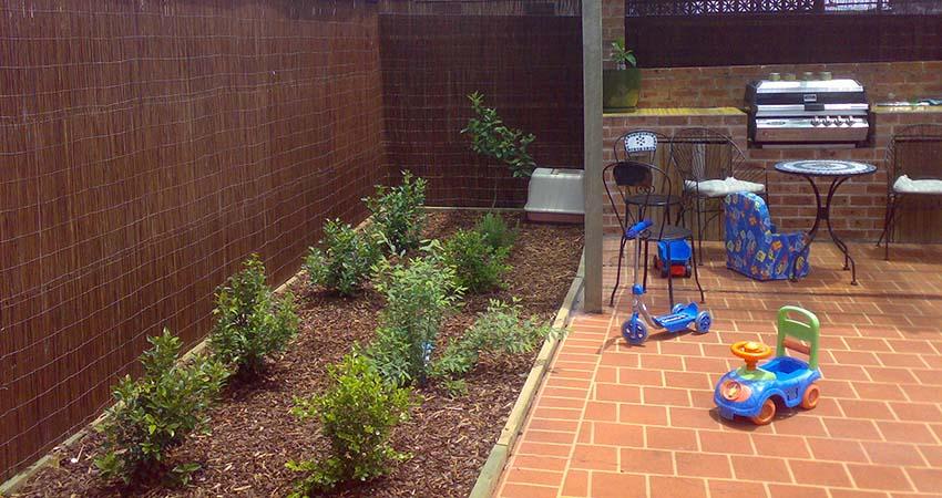 Sydney gardener