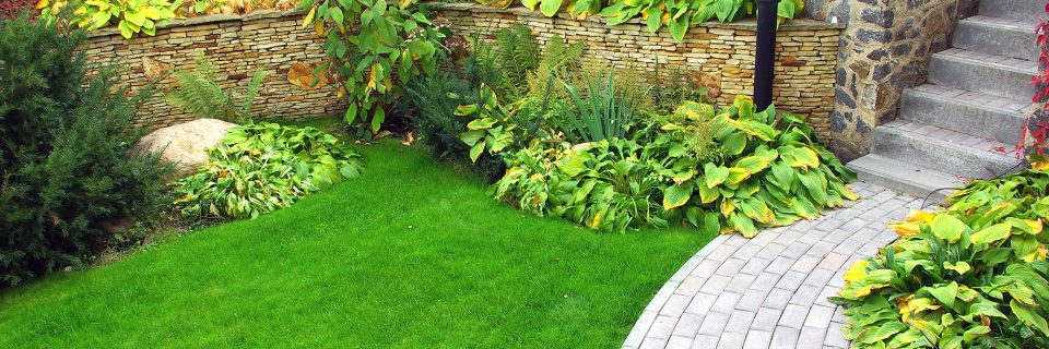Experts in Garden Design