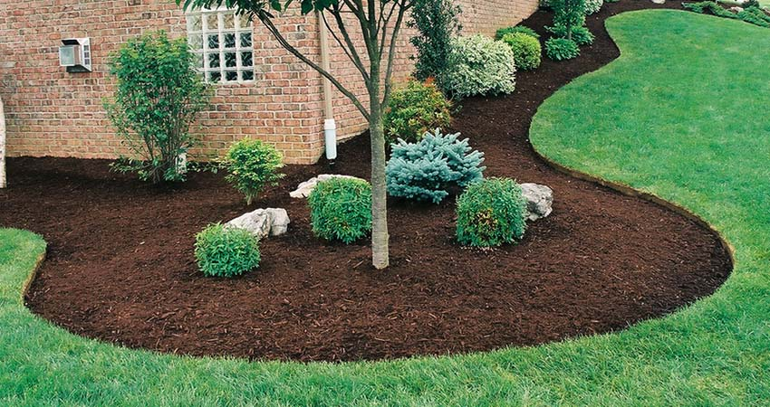 8 great reasons to mulch!