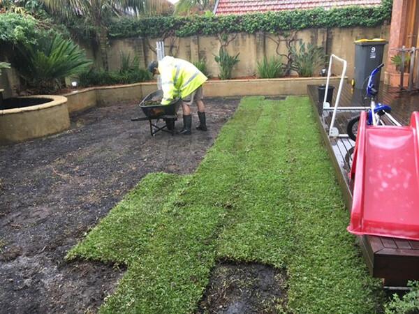 lush lawn care service